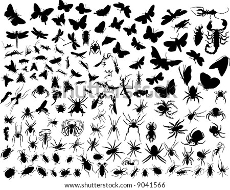 Big Set of  Insects Silhouettes in Different Poses. Almost Each Kind of Insects Represented in set. High Detail. Vector Illustration.