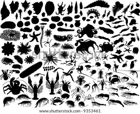 Big Set of  Mollusks and other Invertebrates Silhouettes in Different Poses.  Sea Life Almost Each Kind of It Represented in set. High Detail. Vector Illustration.