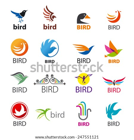 big set of vector icons birds
