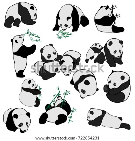 Big set of vector panda silhouettes isolated on white background. Cute panda baby set, flat design vector illustrator. Panda sleeps, eats a bamboo and plays. Animal in different poses, minimal image.