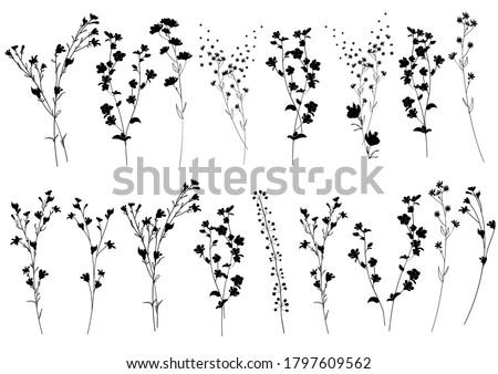 big set silhouettes botanic