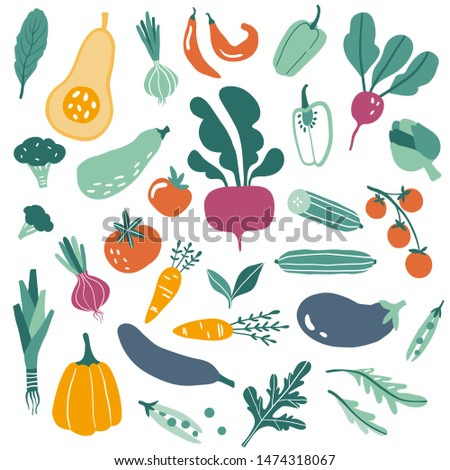 Big set with hand drawn colorful doodle vegetables and greens. Sketch style vector collection. Flat icons: pumpkin, tomato, onion, cucumber. Vegetarian healthy food. Vegan, farm, organic, natural
