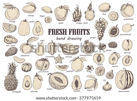 big set with isolated fruits