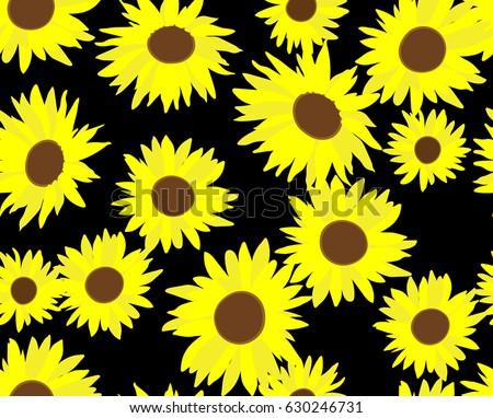 big sunflowers on the black