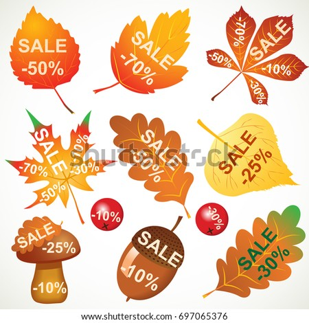 big super autumn sale template