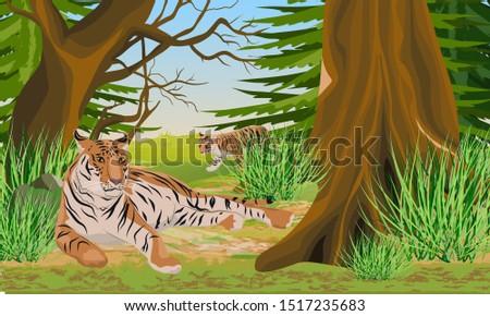 big tigress and her cub rest in