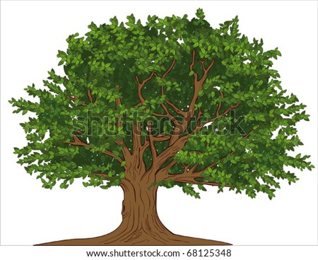 Big tree - stock vector