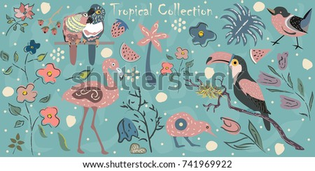 big tropical collection with