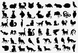 Big Vector Collection of Animals Silhouettes