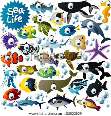 big vector sea-life animals set