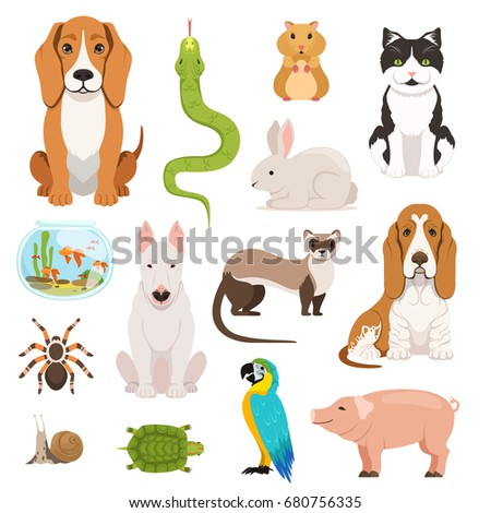 big vector set of different