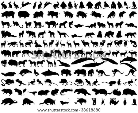 Biggest Set of  Animals Silhouettes in Different Poses. Zoo, Wildlife. Almost Each Kind of Fauna.  High Detail, Very Smooth. Vector Illustration.