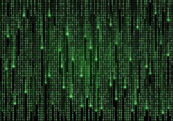Binary code matrix vector background of computer data and digital technology. Green numbers pattern with streams of zero and one digits on black screen, internet security and cyberspace backdrop