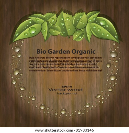 Bio garden organic apple drops vector background Wood