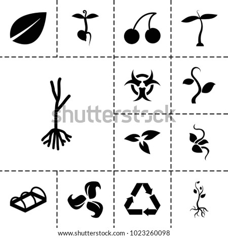 bio icons set of 13 editable