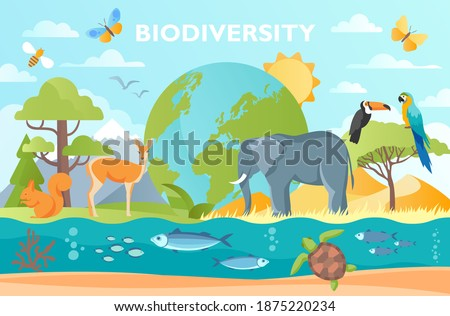 Biodiversity as natural wildlife species or fauna protection abstract concept. Ecosystem climate difference, vegetation and habitat saving vector illustration. Ecology and endangered bio life.