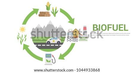 biofuel life cycle  biomass