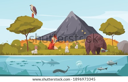 Biological hierarchy cartoon colorful background demonstrated ecosystem with plants animals and fishes vector illustration