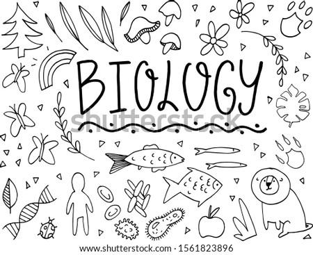 biology doodle vector
