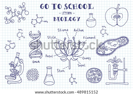 biology. hand sketches on the...