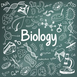 Biology science theory doodle handwriting and tool model icon in blackboard background used for school education and document decoration, create by vector