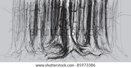 birch forest   vector sketch