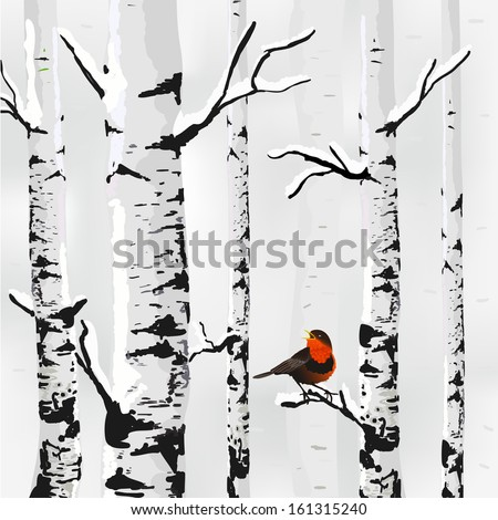 birch in snow  winter card in