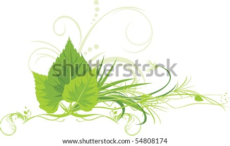 stock-vector-birch-leaves-with-grass-and