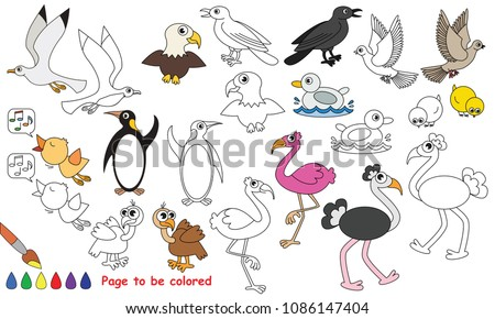 Bird Animal Set To Be Colored The Coloring Book For Preschool Kids With Easy Educational
