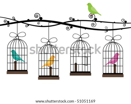 bird cages hanging from decorative branches with birds