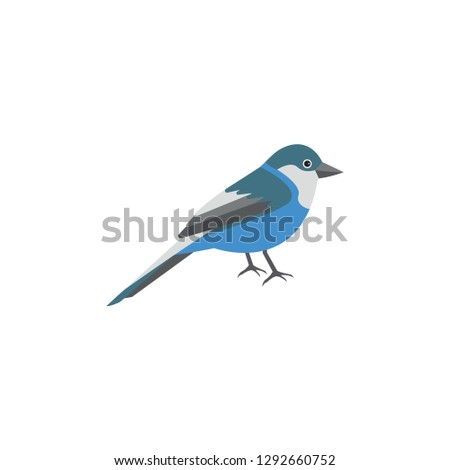 bird cartoon icon