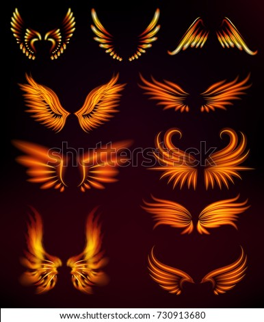 bird fire wings fantasy feather