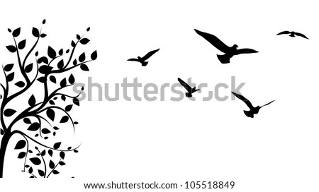 bird flying around a tree