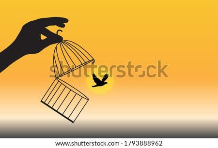 bird flying out of cage freedom