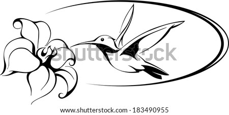 flower vector with humming bird vector