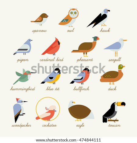 bird icon collection different
