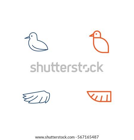 bird line icon logo vector set