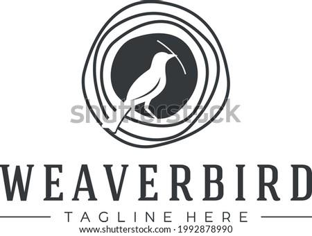 bird logo, weaver bird logo, bower bird logo vector