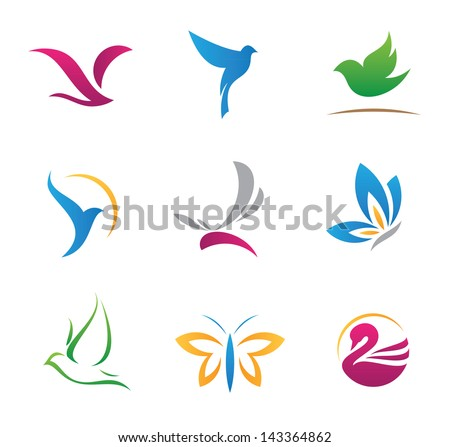 bird nature flying rhythm