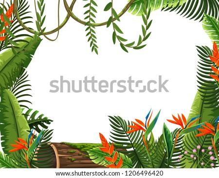 Bird of paradise flower border illustration #1206496420