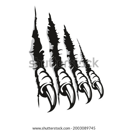 Bird of prey claw marks, scratches, vector monster fingers with long nails tear through paper or wall. Wild animal rips, dragon paw sherds, beast break, four talons traces isolated on white background Photo stock ©