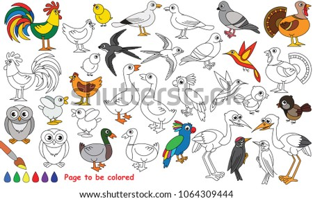 Bird Set To Be Colored The Coloring Book For Preschool Kids With Easy Educational Gaming