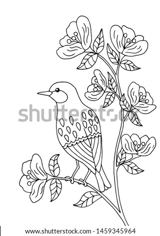 bird sitting on a branch of a