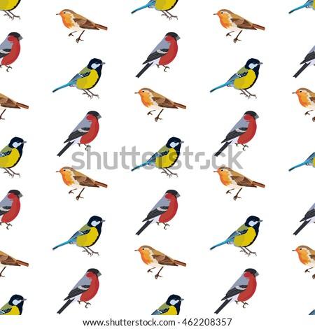 bird vector seamless pattern