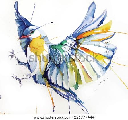 bird watercolor style vector