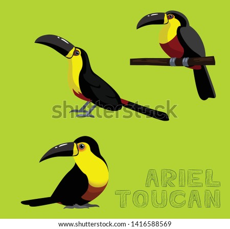 Bird White Ariel Toucan Cartoon Vector Illustration