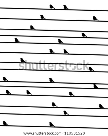birdies on a wire. Vectorial black-and-white background