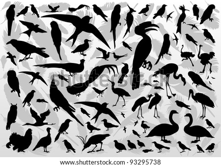 Birds and feathers silhouettes illustration collection background vector - stock vector