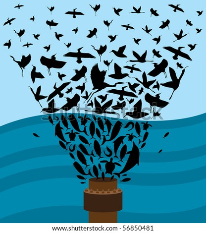 Birds and Marine Life that are affected by the Gulf Coast Oil Spill.