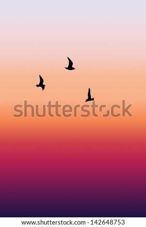 Birds and sunset #142648753